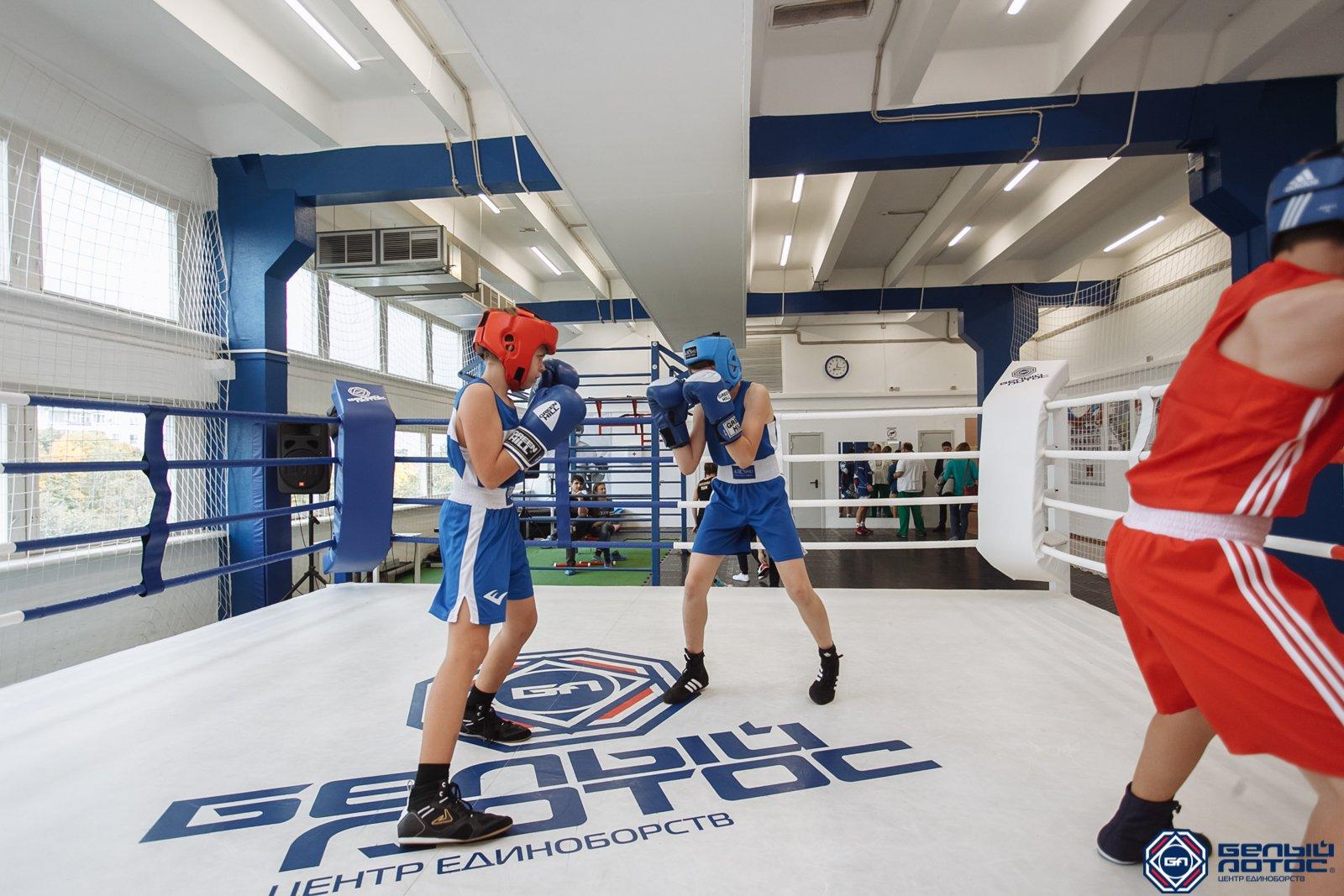 Секция бокса детские группы