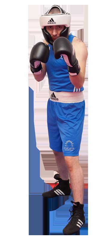 Взрослая экипировка для бокса - тренировочный вид